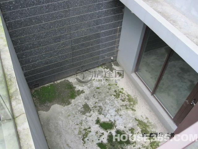 600方花園150方地下室送帶天井獨家