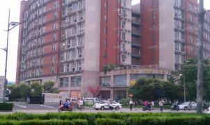 武夷绿洲,南京武夷绿洲二手房租房
