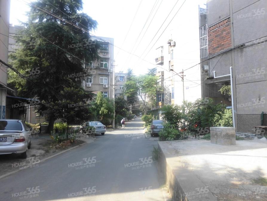 杨庄北村3室1厅1卫77平方产权房简装