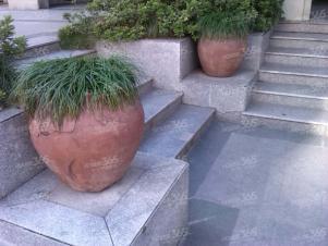 绿城桂花园1室1厅1卫50㎡整租精装
