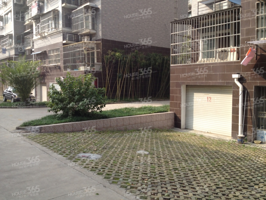 六合老城区小学路小学花园旁作文双语精装三房名门难忘白果一事件的400字图片