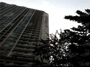 新一代国际公寓3室2厅1卫108�O整租毛坯