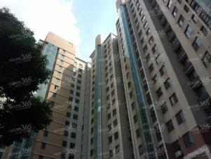 长江绿岛三期1室61�O整租1800(个人房源)