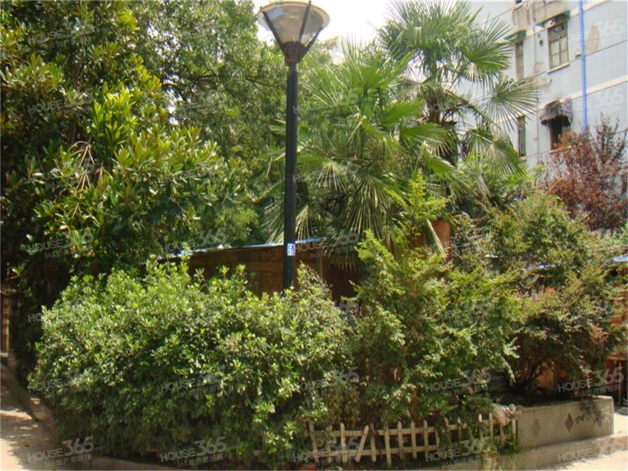 茶南商业街沿街商铺门面宽敞成熟商业街区随时看房