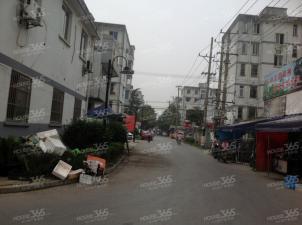 清塘新村,苏州清塘新村二手房租房