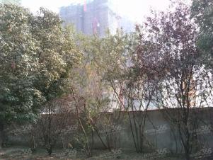 华地润园实景图