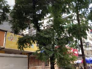 珠江路单间月付550简装